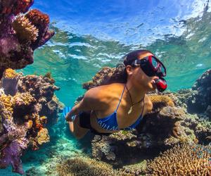 dive, fun, and girl image