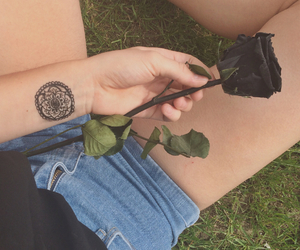 black, grunge, and rose image
