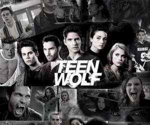 quote, tv show, and teen wolf image