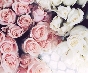 floral, flowery, and white roses image