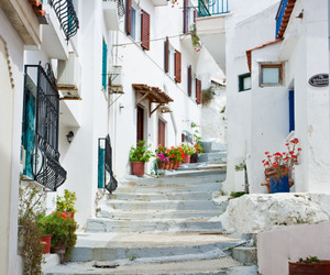 flowers, Greece, and city image