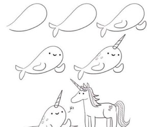 narwhal and how to draw image