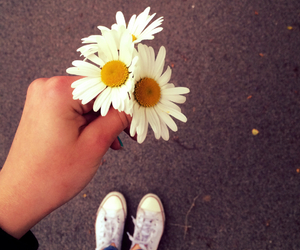 converse, daisys, and fashion image