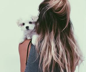 girl, dog, and hair image
