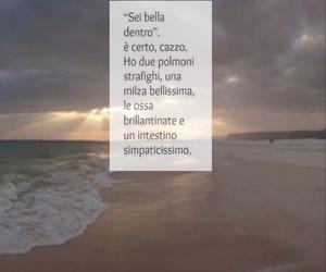 frasi, italiano, and testo image
