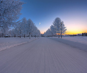 snow, winter, and moon image