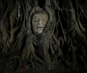 history, Indiana Jones, and mother earth image
