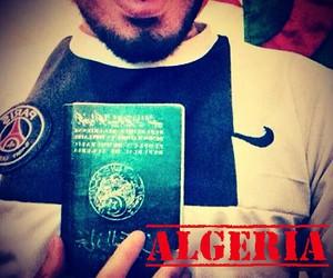 flag, passport, and pride image