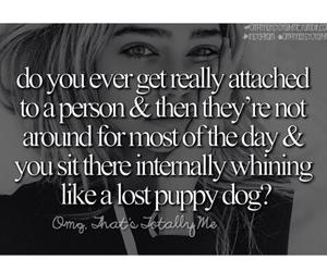 bff, dog, and OMG image