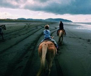 horse, beach, and travel image