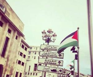 Algeria, palestine, and dz image
