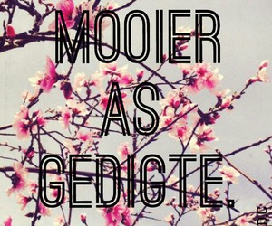 afrikaans, liefde, and mooi image
