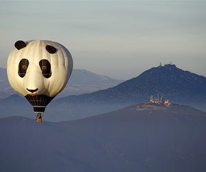 panda, balloon, and sky image