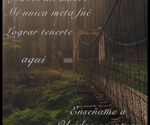 amor, aventura, and frases image