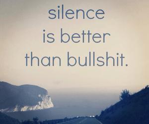 silence, truth, and bullshit image