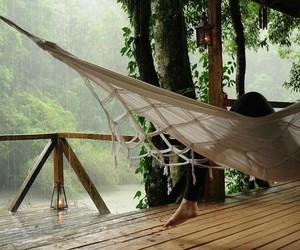 rain, nature, and peace image