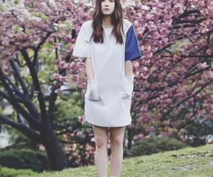 beautiful, cherry blossom, and korean fashion image