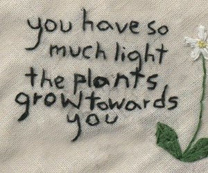 plants, quotes, and light image