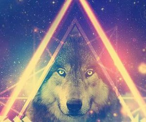 cover, galaxy, and wolf image