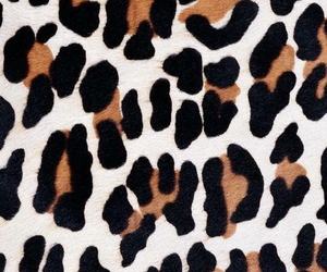 iphone, leopard, and wallpaper image