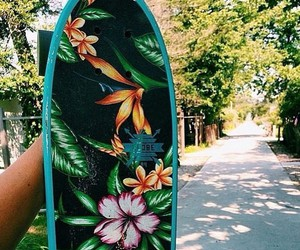 nature, skate, and travel image