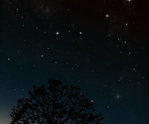 night, stars, and tree image