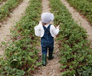 field, girl, and strawberries image