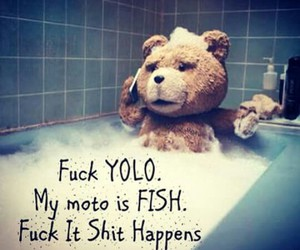 fish, yolo, and TED image