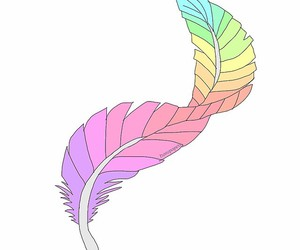 feather, overlay, and photography image