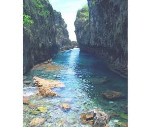 nature, amazing, and summer image