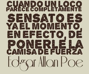edgar allan poe, frases, and gotico image