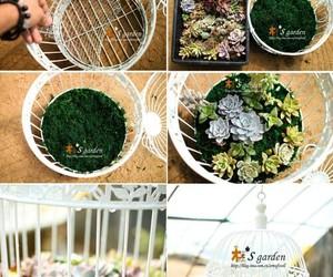 diy, flowers, and garden image