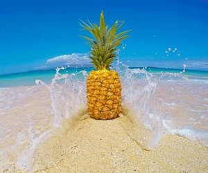 beach, blue sky, and pineapple image