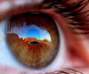 eye, brown, and eyes image