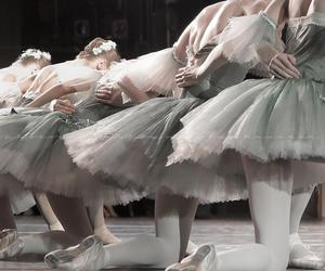 ballet, dance, and flowers image