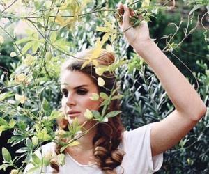 music, lana del rey, and vintage image