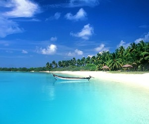 beach, summer, and blue image