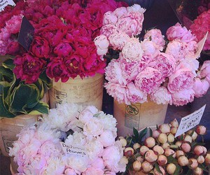 florist and flowers image