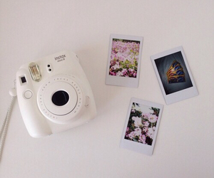 beauty, camera, and flowers image