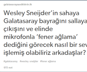galatasaray, wesley sneijder, and fernando muslera image