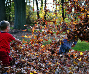boy, autumn, and child image