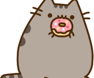 cat and donut image