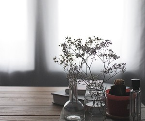 lovely, plants, and vintage image