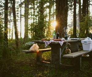 adventure, camping, and fire image