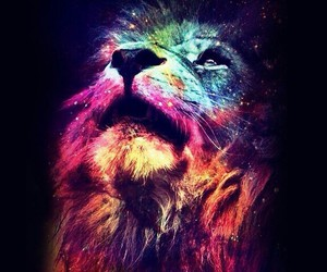 lion and galaxy image