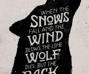 game of thrones, wolf, and stark image