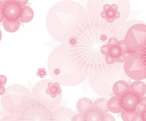 floral, flowers, and facebook cover image