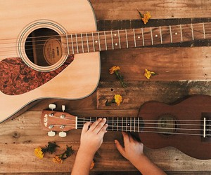 guitar, music, and flowers image