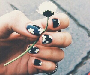 flower, mani, and nail image