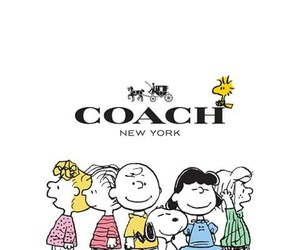 charlie brown, coach, and peanuts image